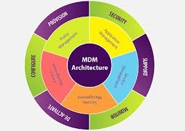 How Do MDM Tools Support The Functioning Of A Business?