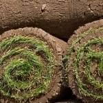 How to Lay Garden Turf