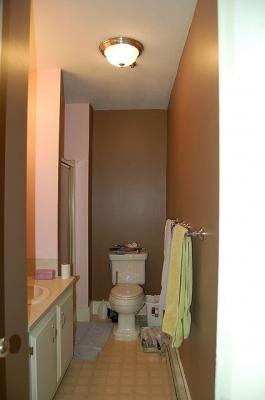 Less Shiteous Bathroom