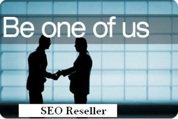 Choose the Best SEO Reseller USA Program