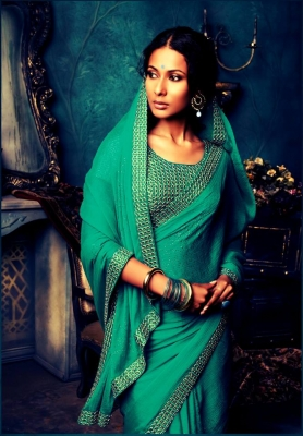 Embroidered Sarees The magic of Elegant Embroidery Designs