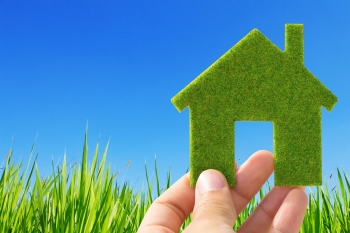 Five Home Greening Tips