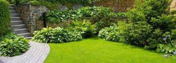 Garden Maintenance Service and Garden Landscape Designer
