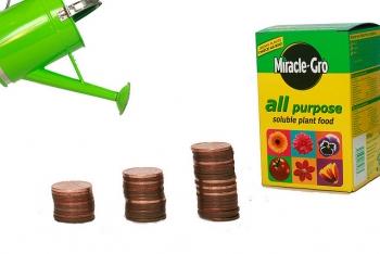 Grow rich quick