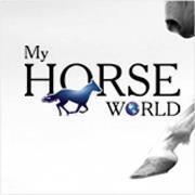 Horsemanship Training Advanced Rider