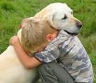 How to Establish Healthy Relationships Between Children and Dogs