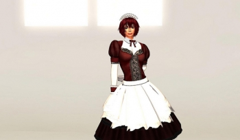 Maid outfit for tomorrow party