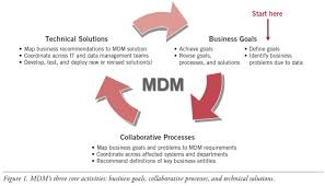 Make The Best Use Of MDM Solutions By Improving Data At Its Entry Stage