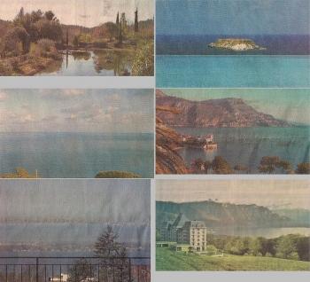 real estate landscapes