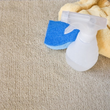 Simple DIY carpet cleaning project